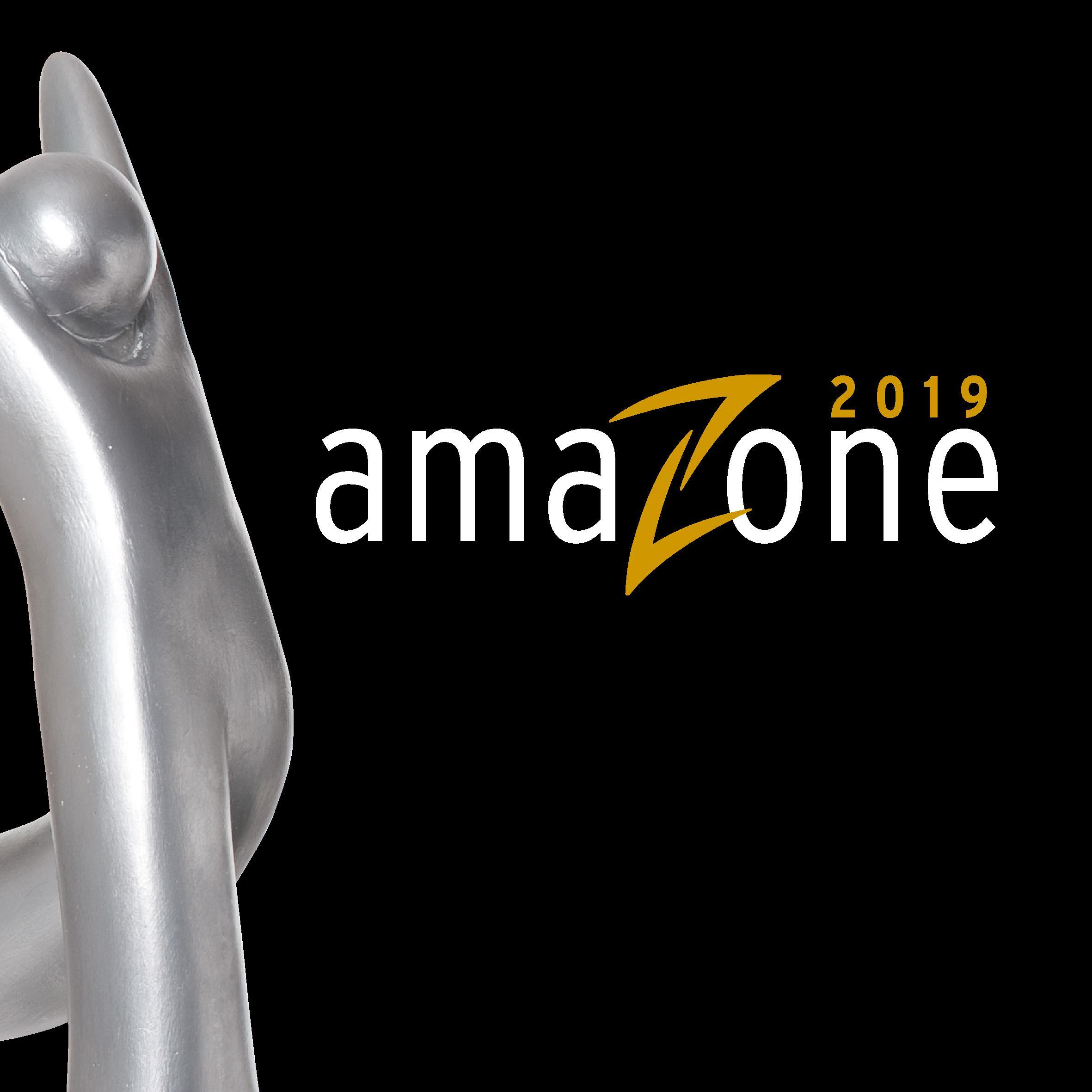 Titelbild amaZone-Festdokumentation 2019